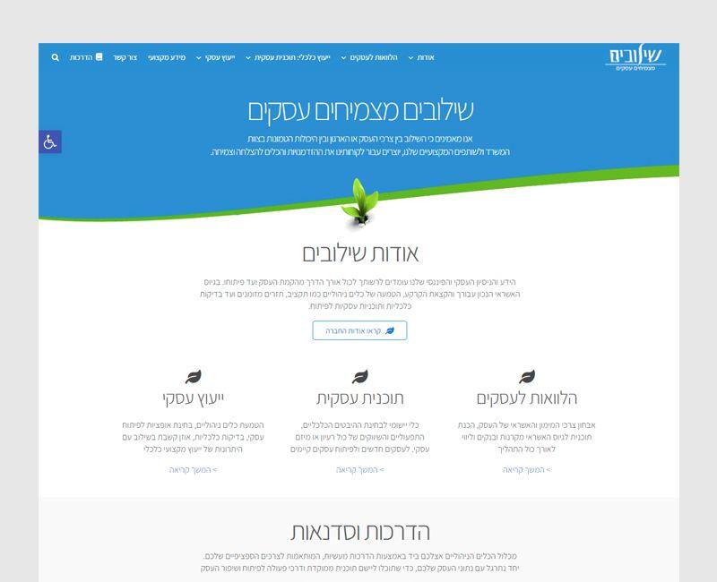 הקמת אתר תדמית לשילובים